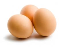 Parliamo di uova